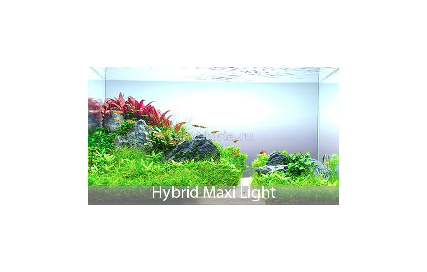 Освещение LED SCAPE HYBRID MAXI LIGHT
